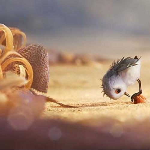 Cùng với Finding Dory, phim ngắn Piper cũng sẽ sớm được Pixar tung ra để những người hâm mộ thưởng thức.