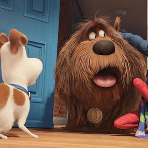 The Secret Life of Pets đại thắng doanh thu phòng vé Bắc Mỹ